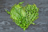 A heart of different green — Stock Photo