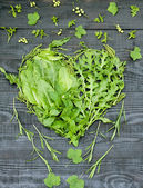 Green vitamin heart — Stock Photo