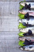 Sea fish on a wooden board — Stock Photo