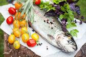 Fresh trout with tomato cherry — Stock Photo