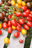 Different tomatoes cherry — Stock Photo