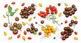 Branches of colorful tomatoes — Stock Photo