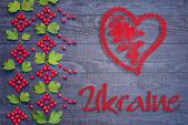 Ukrainian pattern of Viburnum — Photo