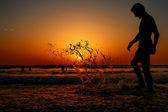 夏のシルエット — ストック写真