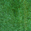 Stock Photo: Green grass surface