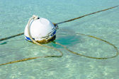 Rusty buoy in port water with ropes — Stock Photo