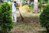 Człowiek z prowizji zbiera liście — Zdjęcie stockowe