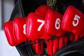 Attrezzatura da golf in un sacchetto. ha un numero di dimensioni. — Foto Stock