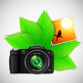 Modern photo camera with green leaves — Stock Vector