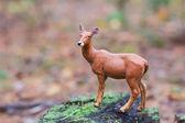 Figurine deer in autumn forest — Stock Photo