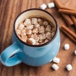 Hot chocolate with mini marshmallow and cinnamon — Stock Photo #41603263