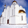 Stock Photo: Slavic church