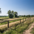 Stock Photo: Path on dike