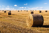 Straw bales on field — Stock Photo