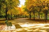 Tiergarten berlin — Stok fotoğraf