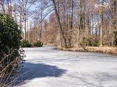 Winter park — Zdjęcie stockowe
