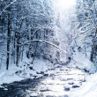 Winter landscape — Stock Photo #37231039