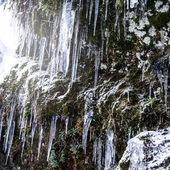 Icicles on a rock — Stock Photo