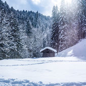 Winter landscape with cottage — Stock Photo