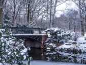 Bridge in the park — Stockfoto