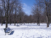ławce w parku — Zdjęcie stockowe