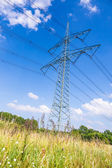 Electrical tower in summer — Stock Photo