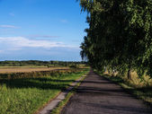 Cycling way in landscape — Stock Photo