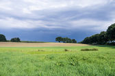 Landscape before a thunderstorm — Stock Photo