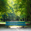 Stock Photo: Bench in tiergarten berlin