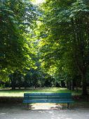 Bench in tiergarten berlin — Stock Photo