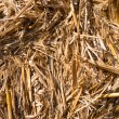 Stock Photo: Straw bale background