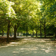 Tiergarten berlin — Stock Photo