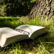 Stock Photo: Book an glasses in forest