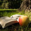 Book, glasses, apple — Stock Photo