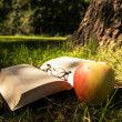 Stock Photo: Book, glasses, apple