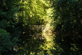 Tiergarten berlin — Zdjęcie stockowe