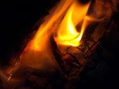 Kamp ateşi — Stok fotoğraf