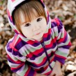 Autumn portrait of cute little girl — Stock Photo #37877977