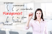 Business woman writing management skill and responsibility. Office background. — Stock Photo