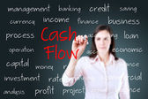 Young business woman writing cash flow concept — Stock Photo