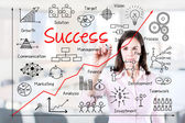 Young business woman writing business success by many process. Office background. — Stock Photo