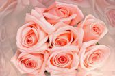 A bunch of flowers pink roses — Stock Photo