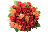 Round bright bouquet of roses in the center of the white background — Foto Stock