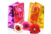 Colorful gift bags and flowers for the holiday still life — Stok fotoğraf