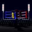 3d boxing ring. — Stock Photo