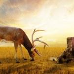 Abstract deer. — Stock Photo