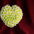 Floral heart. — Stock Photo