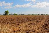 Farmers. — Stock Photo
