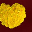 Valentine floral heart background. — Stock Photo