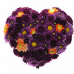 Valentine floral heart background. — Stock Photo